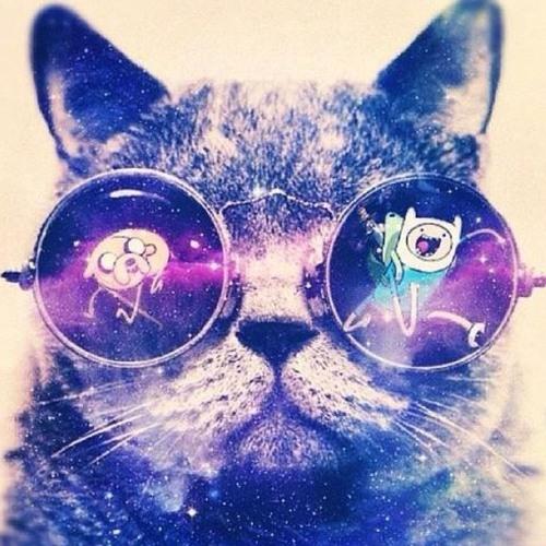 DJ Teady's avatar