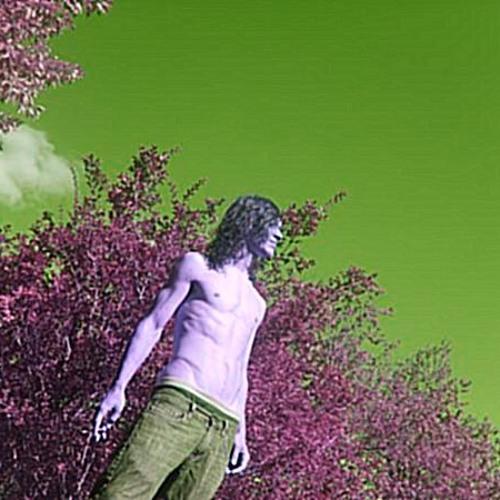 Token Hippy's avatar
