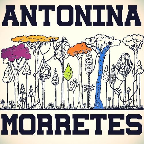Antonina Morretes's avatar