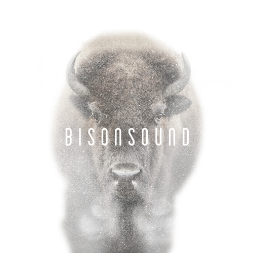 BisonSound's avatar