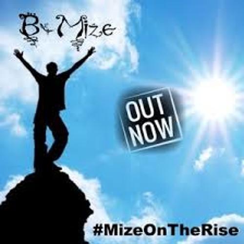 B-Mize's avatar