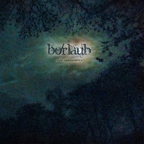 """Børlaub  """"WIR STIMMEN""""'s avatar"""