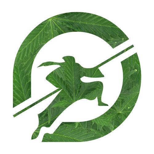 raatid-Interactive's avatar