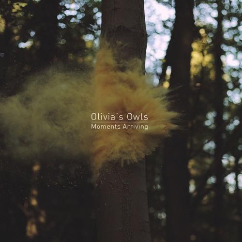 Olivia's Owls's avatar