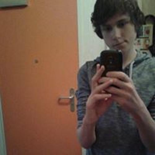 Leon Werner's avatar