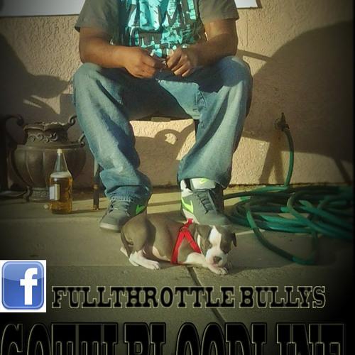 MR.FULLTHROTTLE's avatar