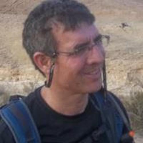 Menachem Klein's avatar