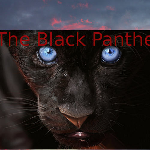 The Black Panther offical's avatar