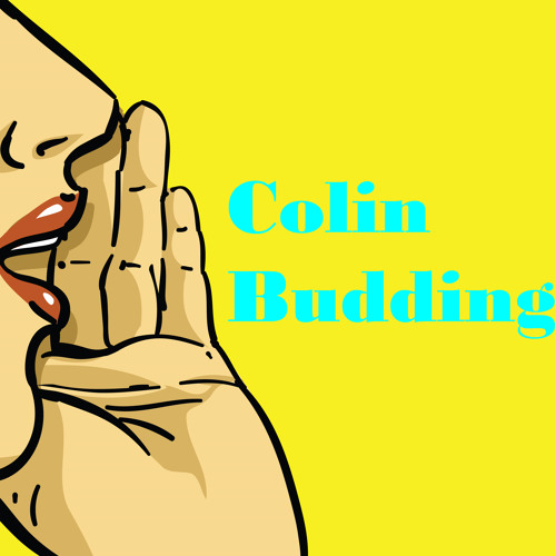 Colin Budding's avatar