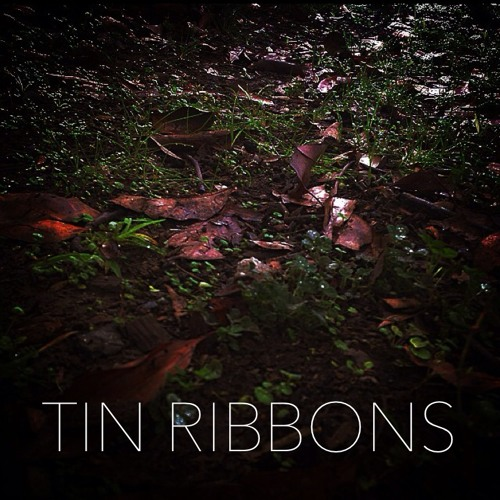 TIN RIBBONS's avatar