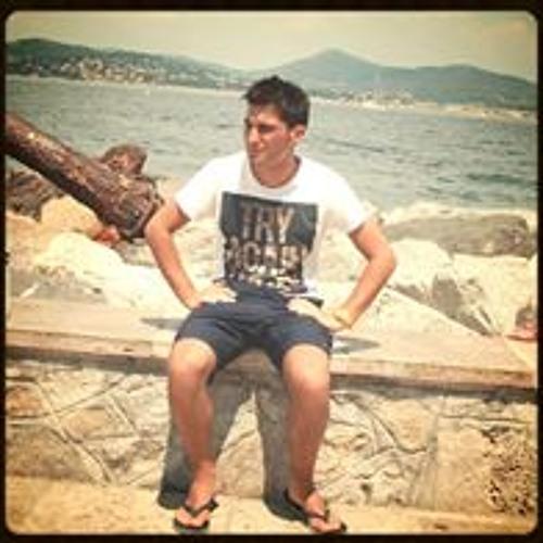 Luca Cobben's avatar