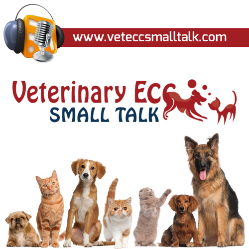 VeterinaryECCSmallTalk's avatar