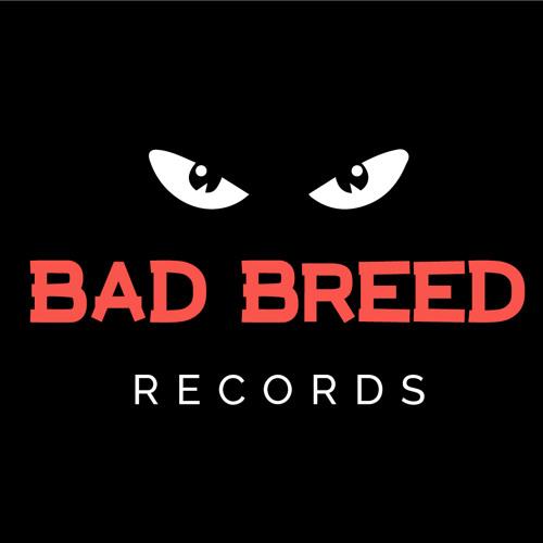 BAD BREED RECORDS's avatar