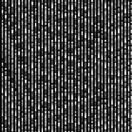 Noise Lake's avatar