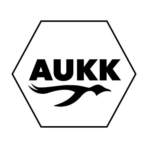 Aukk old's avatar