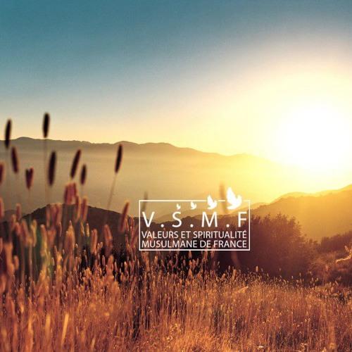 Ateliers VSMF's avatar