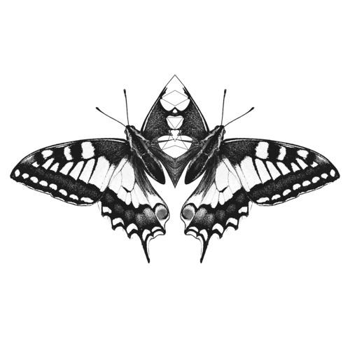 schwebekastenjunge's avatar