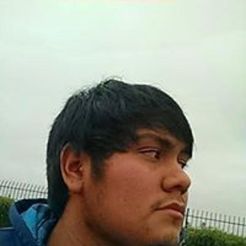 Salvador Peepeechu's avatar