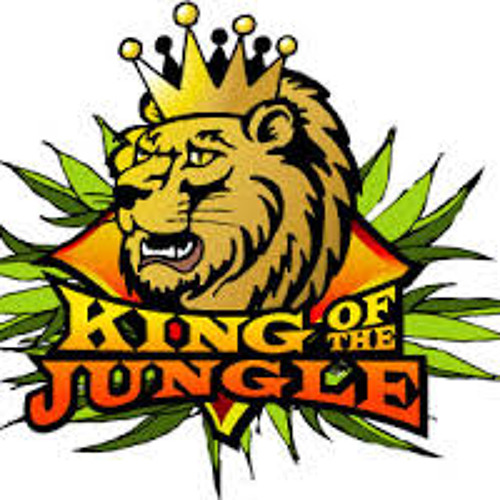 king of the jungle's avatar
