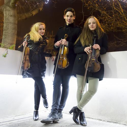 Trio de Rue's avatar