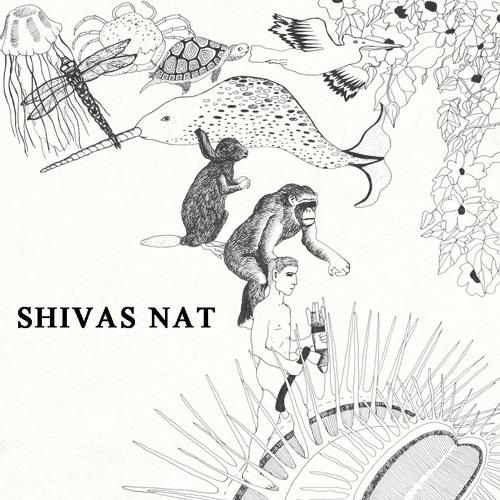 SHIVAS NAT's avatar