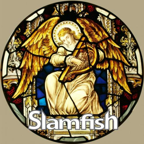 * Slamfish *'s avatar