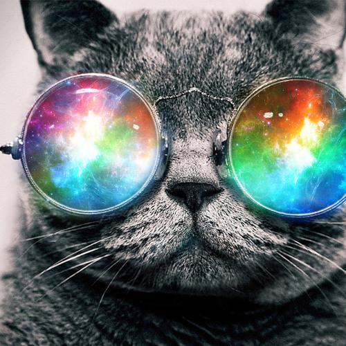 audiocat's avatar