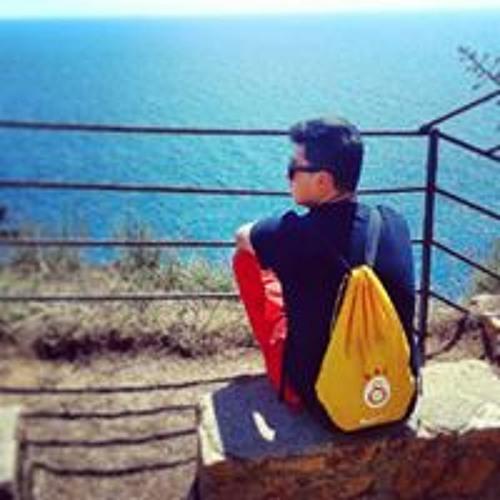 Sinan Kalaysi's avatar