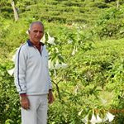 Rodolfo Cabeza's avatar