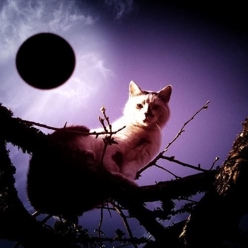 Must Päike ♒☀♒'s avatar