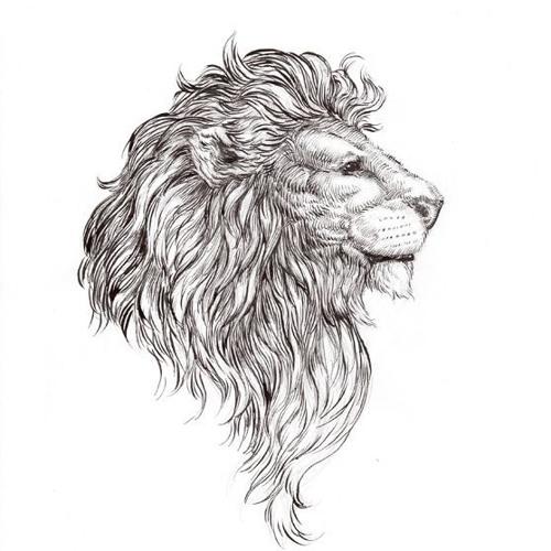 Shandar's avatar