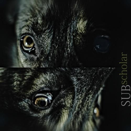 SUBscholar's avatar