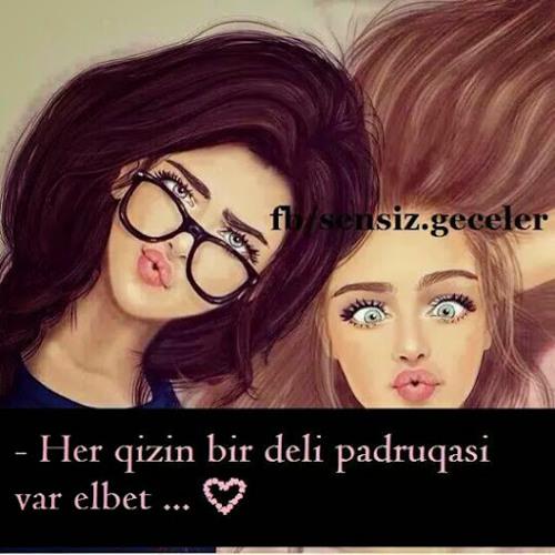 Arzu Arzu's avatar