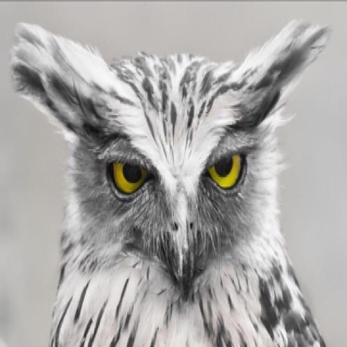owen thomas's avatar