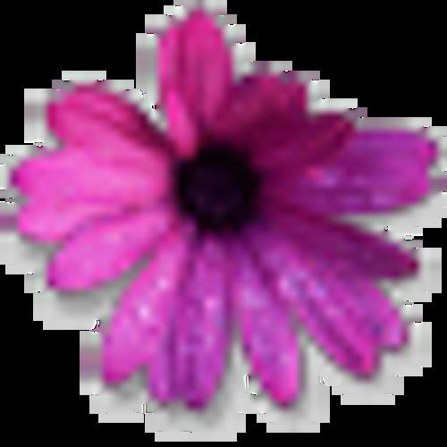 glazaro's avatar
