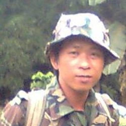 Nguyễn Hùng's avatar