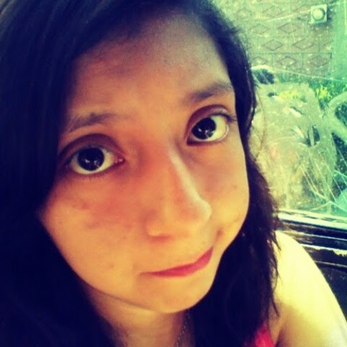 Brenda Noemi Perez Sierra's avatar
