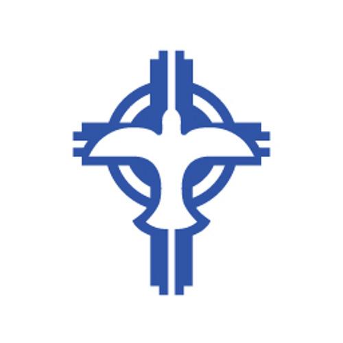 YCP San Antonio's avatar