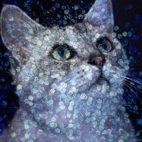 PLASTICZOOMS's avatar