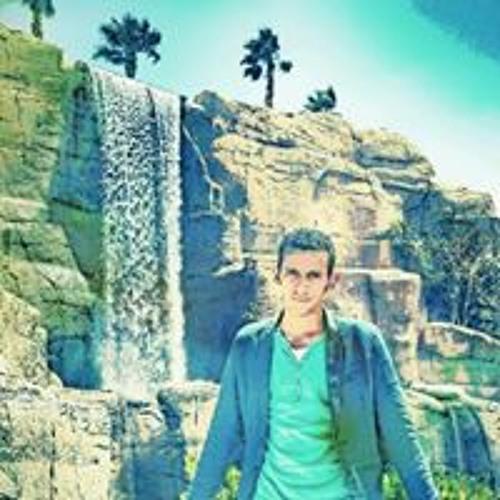 Mostafa Elgayar's avatar