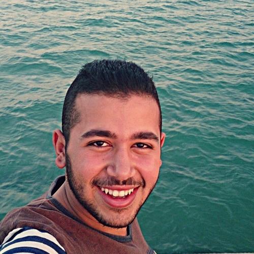 Ibrahim Elsayed 11's avatar