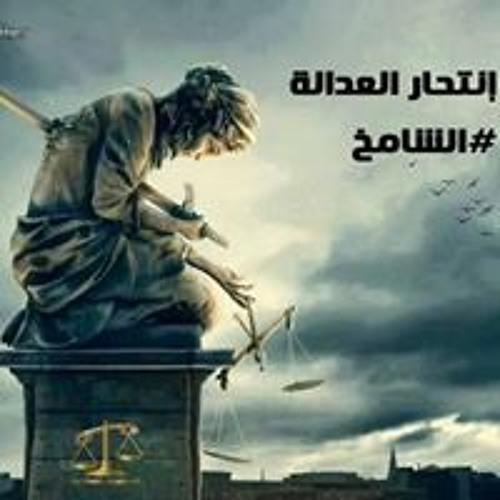 Basma Yassien's avatar