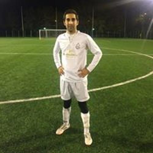 Mehdi Leonardo Haghshenas's avatar