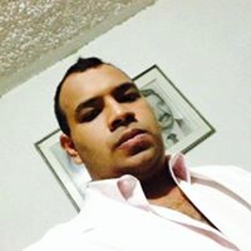 Stuardo C. Meneses's avatar