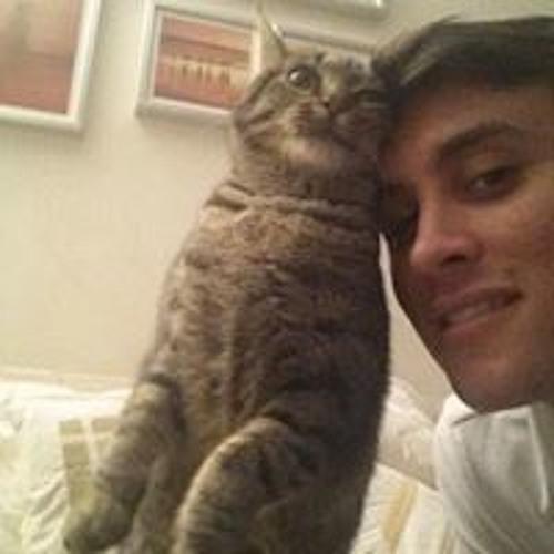 Alessandro Minoia's avatar