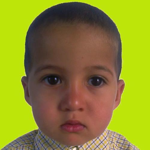 el mostafa lafryhi's avatar
