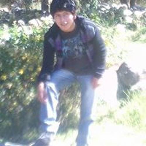 Luis Medrano Saenz's avatar