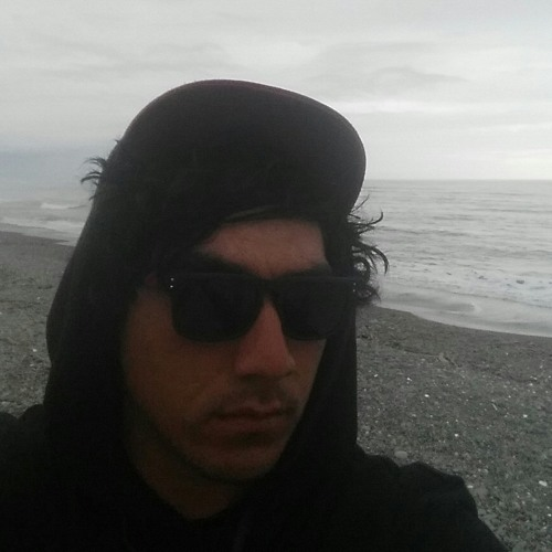pukeko's avatar