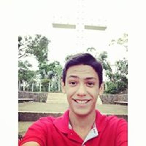 Luis Chamul's avatar