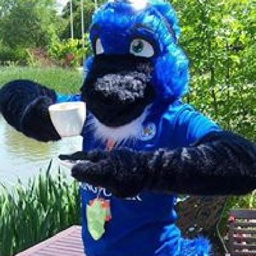 Hawk Ker Blue's avatar